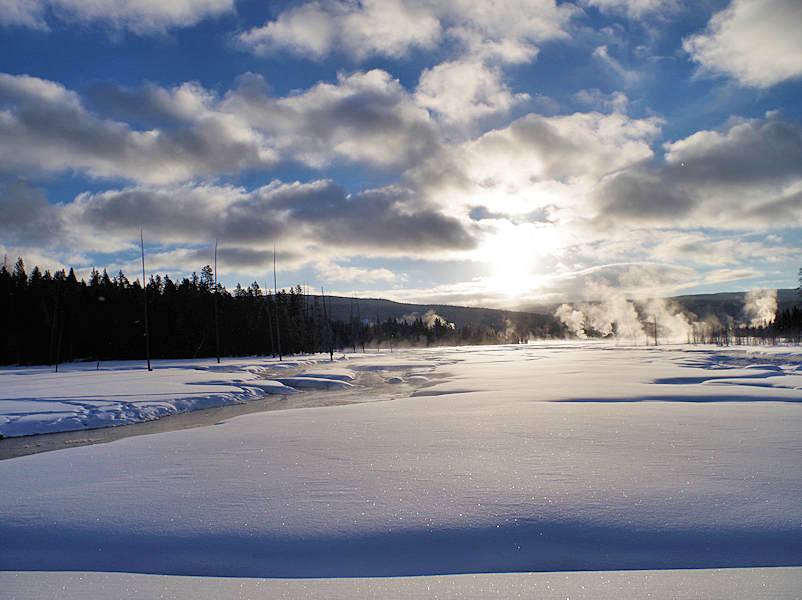 Yellowstone National Park Winter