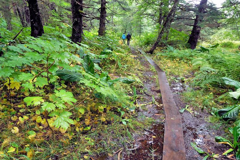 Point Bridget Trail, Juneau
