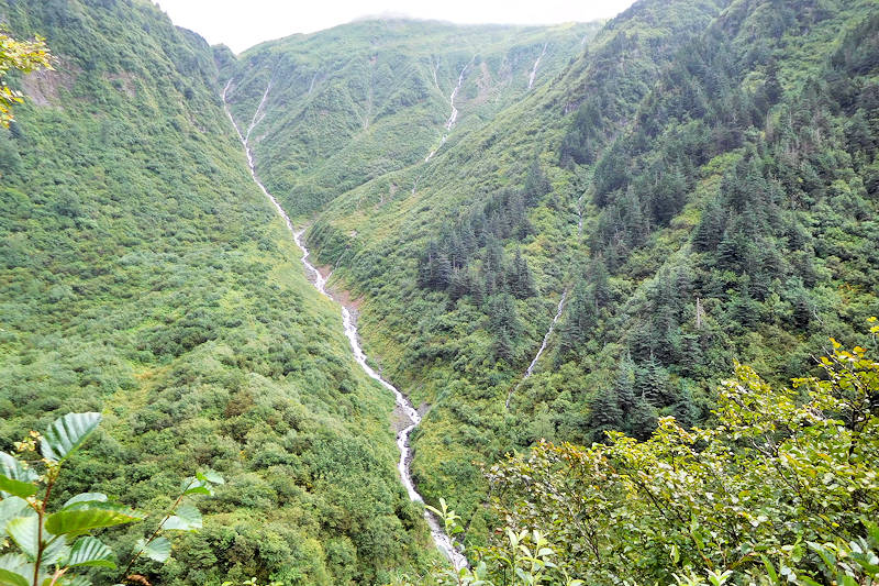 Perseverance Trail, Juneau Alaska