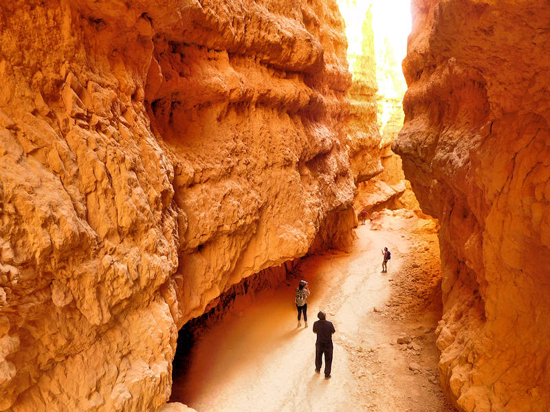 Wall Street, Bryce Canyon National Park